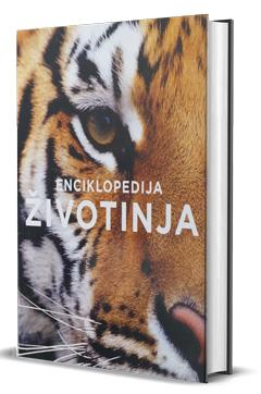 vesela knjiga valjevo enciklopedija zivotinja